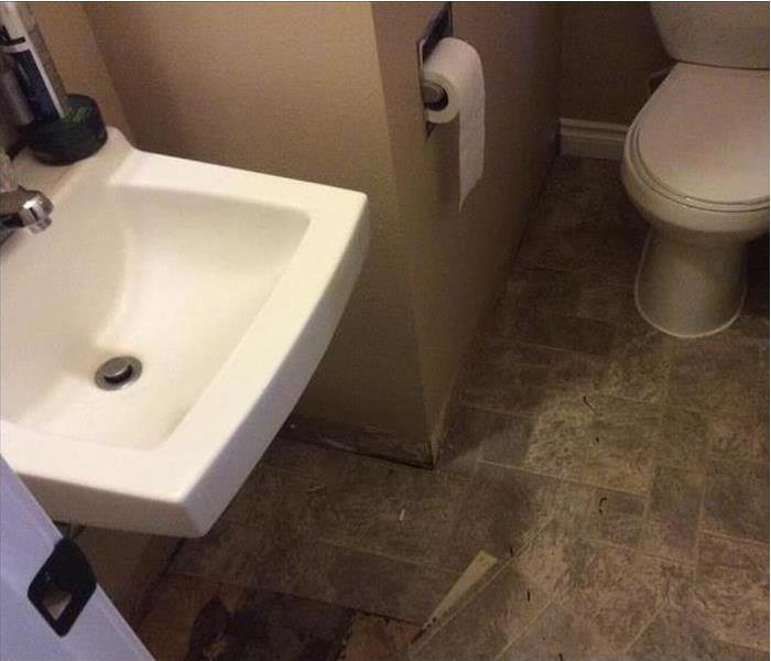 bathroom sink with mold damage